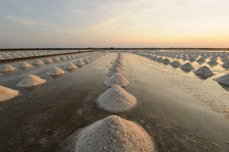 Salt fields with piled up sea salt in Thailand