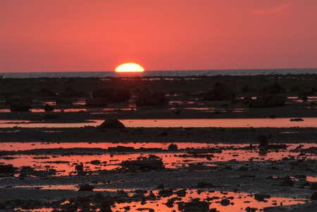 pierre sur la plage au coucher du soleil