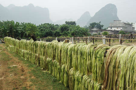 Sisalvezel, grondstoffen uit China Stockfoto