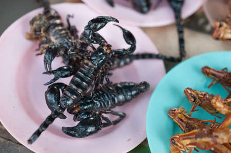 scorpion: Roasted scorpions and water bugs as snack food in Thailand Stock Photo