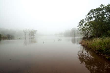 mornings: Mornings fog over the lake, Thailand