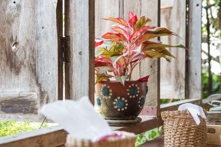 wakening: Vase with a flower on the windowsill country house.