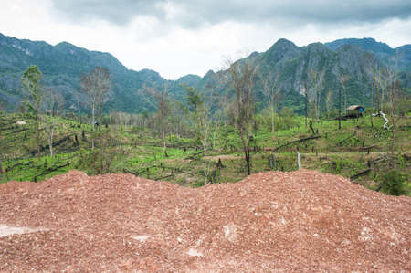 prohibitions: Destroyed tropical rainforest in Laos.