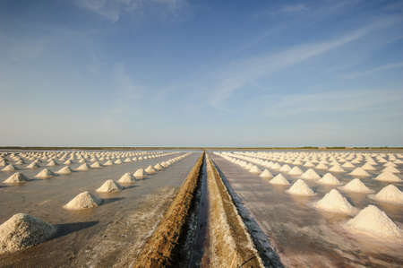 evaporation: View of Salt evaporation ponds in gulf of Thai, Thailand