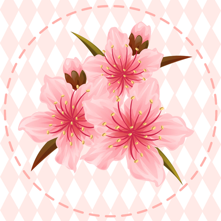 peach blossom flower illustration vector