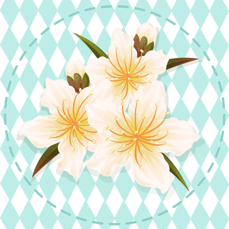 white peach blossom flower illustration vector