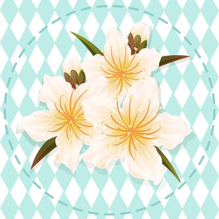white peach blossom flower illustration vector