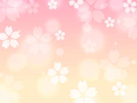 Yellow Pink Sakura cherry blossom spring background illustration vector