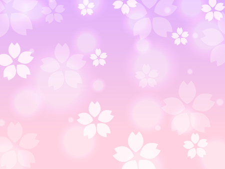 Violet Pink Sakura cherry blossom spring background illustration vector