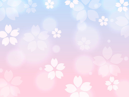 Blue Pink Sakura cherry blossom spring background illustration vector  イラスト・ベクター素材