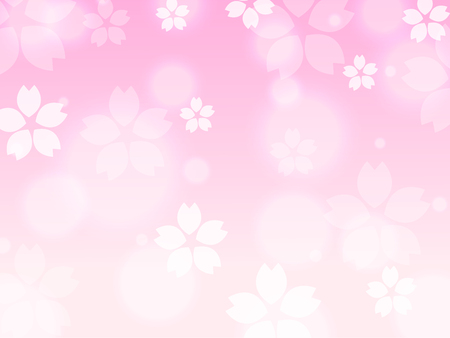 Pink Sakura cherry blossom spring background illustration vector  イラスト・ベクター素材