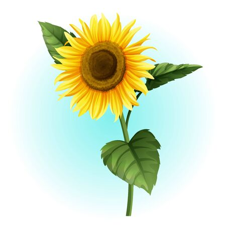 sunflower isolated summer illustration vector  イラスト・ベクター素材