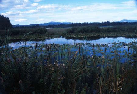 Oregon outdoors photo