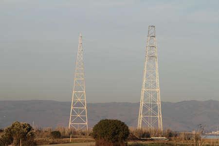 alto: Palo Alto Baylands