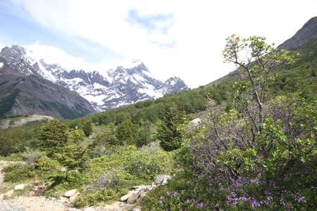 torres: W Trek on Torres Del Paine Park Stock Photo