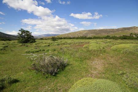 W Trek on Torres Del Paine Park Stock Photo - 17085848
