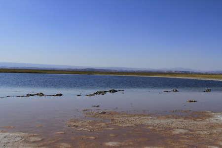 laguna: Laguna Cejar, Atacama, Chile Stock Photo