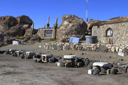 incahuasi: Parque Incahuasi, Salar De Uyuni Bolivia Editorial
