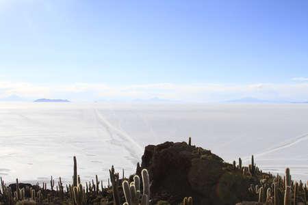 incahuasi: Parque Incahuasi, Salar De Uyuni Bolivia Stock Photo