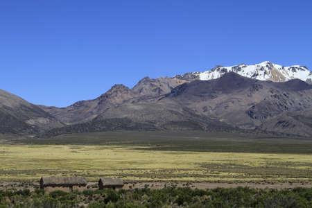 parque: Parque Nacional Sajama