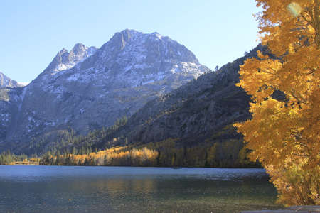 sierras: Eastern Sierras in fall