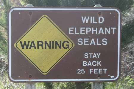 ano: Warning signs for Elephant Seals at Ano Nuevo Stock Photo