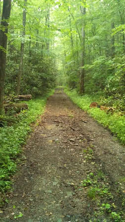 tennesse: Smokey Mountains, Tennessee y Carolina del Norte