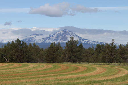 to bend: View of Deschutes Wilderness, Bend Oregon Stock Photo