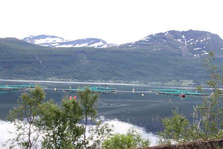 Inseln von Kvaloya und Senja, Norwegen, Berge, Seen, Fjorde Standard-Bild - 93529918