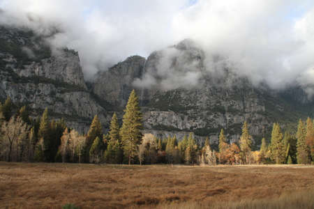 Nature in Yosemite national park in the fall