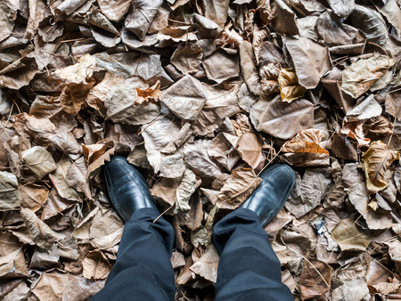 fluctuate: Business man looking down on floor with full of leafs. Stock Photo