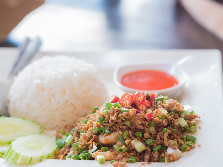 admixture: Fried garlic with rice and pepper sauce.  Thai style native food. Stock Photo