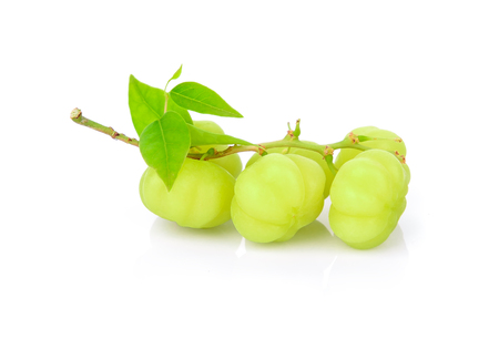 star gooseberry on white background Stock Photo