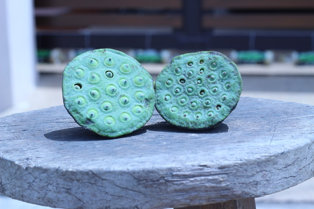 lotus seeds: Lotus seeds green on gray old wooden chair Stock Photo
