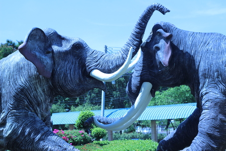 elephant angry: Two large elephant statues were fighting each other in the garden