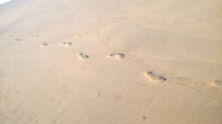 Footprints in the sand Banco de Imagens