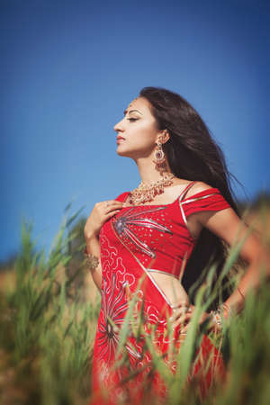 Beautiful young indian woman in traditional clothing with bridal makeup and jewelry  gorgeous brunette bride traditionally dressed Outdoors in India  Girl bollywood dancer in Sari  Arabian bellydancer photo