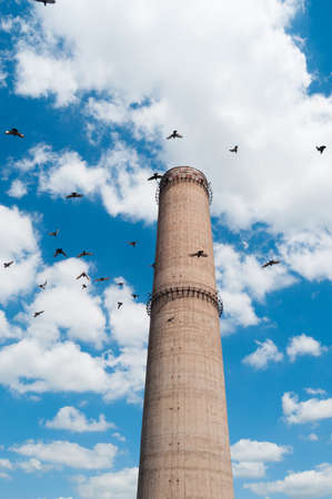 tall chimney: Industrial chimney with blue sky