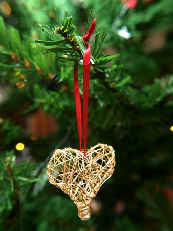 evergreen trees: Golden heart ornament hanging on a Christmas tree Stock Photo