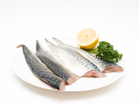 mackerel: Raw mackerel fish filet