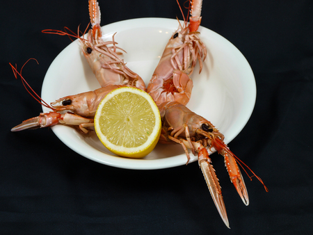 Langoustine prepared on a white plate with lemon, towards black background