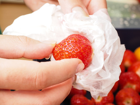 Female person drying up a washed strawberry with white household paper photo