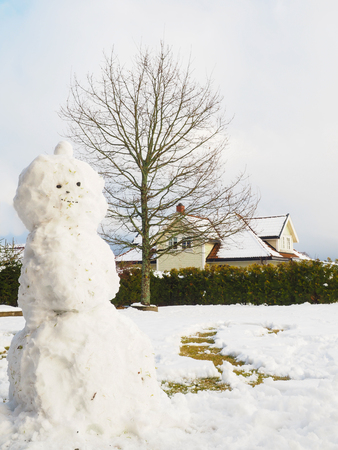 carrot tree: Snowman in garden half done, without scarf, hat and carrot in front of house and oak tree