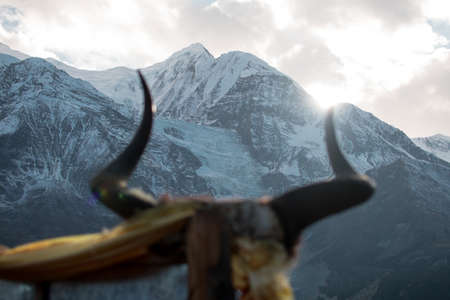 Animal horns on a stick in front of a snowy mountain with bright sun