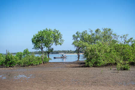 A small boat in a river by mangrove trees in the soil during low tide in Ngwesaung, Irrawaddy, western, Myanmar