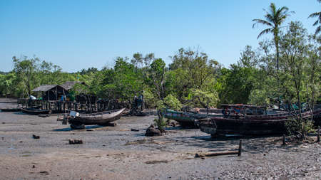 Traditional wooden fishing boats on land by mangrove trees during low tide, Chaung Thar, Irrawaddy, western Myanmar