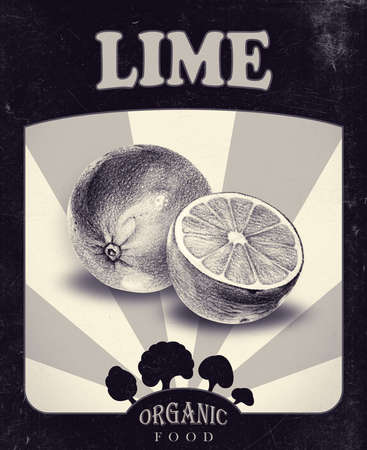 Flyer with limes drawn by hand with pencil. Retro design. Drawing with crayons. Fresh tasty fruits painted from nature. Tinted black and white Stock fotó - 83315573