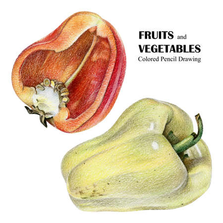 vitamine: Illustration with red and yellow peppers drawn by hand with colored pencil. Drawing with crayons. Fresh tasty vegetables painted from nature