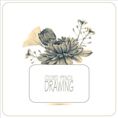 Beautiful spring flowers and plants drawn by hand with colored pencils. Pencil drawing. Place for text. Toned black-and-white