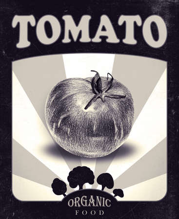 Flyer with tomato drawn by hand with pencil. Retro design. Drawing with crayons. Fresh tasty vegetable painted from nature. Tinted black and white